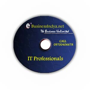 IT Professionals Directory